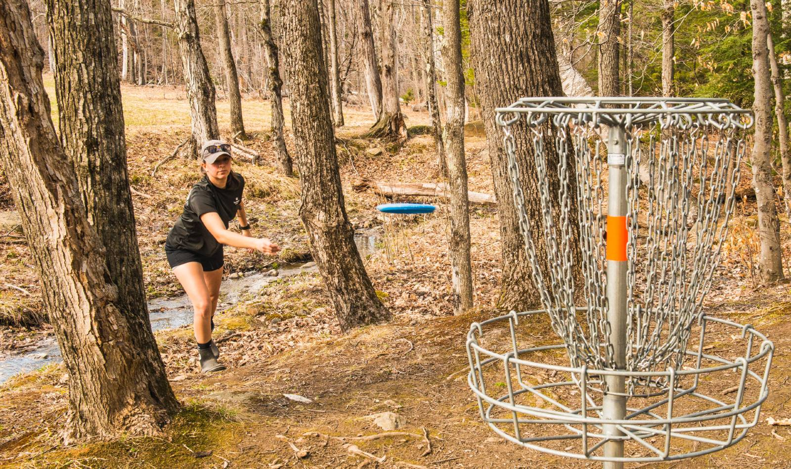 Disc Golf at Trapp Family Lodge